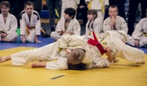 Sportmatten Reinigung Judo